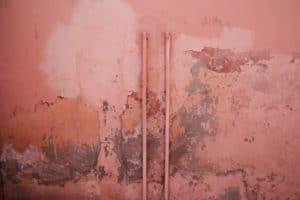 Rose poussiéreux