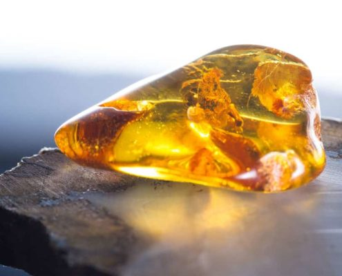 ambre salée